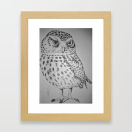 HOOT HOOT!  Framed Art Print