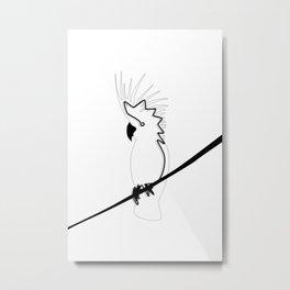 Cockatoo in line Metal Print
