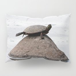 Baby Turtle on a Rock Pillow Sham