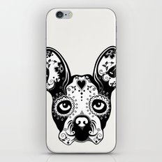 B.Terrier  iPhone & iPod Skin