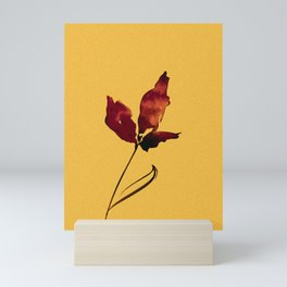 Floral Abstract No.2s by Kathy Morton Stanion Mini Art Print