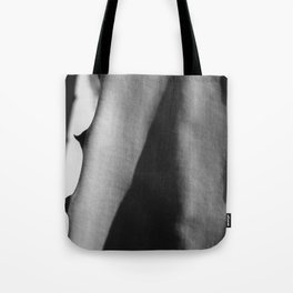Shadow of a cactus leaf Tote Bag