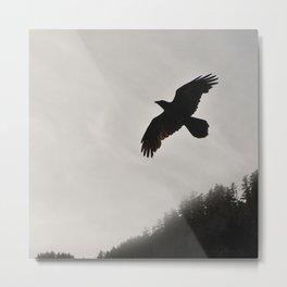 Raven Corvid Bird Northwest Mist Fog Forest Beach Landscape Oregon Metal Print