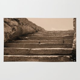 The Old Steps Rug