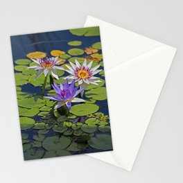 Unsettled Penumbra Stationery Cards