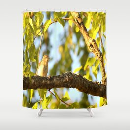 Songbird Singing On The Branch  #decor #society6 Shower Curtain