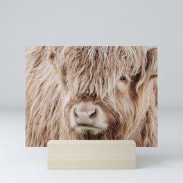 Scottish highland cow head, hairy face close-up Mini Art Print