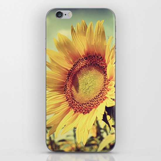 sunflower close up iPhone & iPod Skin