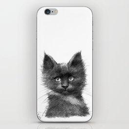 Black Kitten SK135 iPhone Skin