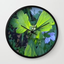 Rose of Sharon in Bud Wall Clock