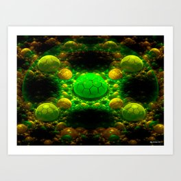 Shells Of The Green Turtle Art Print