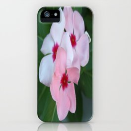 Blooming Beautiful Pink Impatiens Flowers iPhone Case