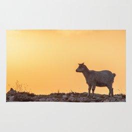 Goat baby sunset E5-5789 Rug