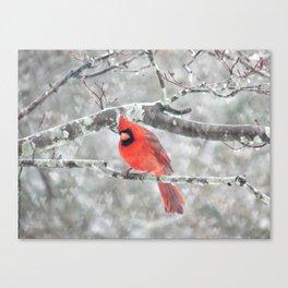 Color My Winter Canvas Print
