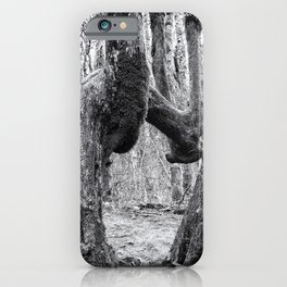 The Beauty of Singularity iPhone Case