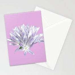 Flower | Pink Chive Floral | Nadia Bonello Stationery Cards