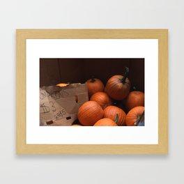 Pumpkins In a Box! Framed Art Print