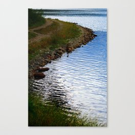Water's Edge at Walden Pond Canvas Print