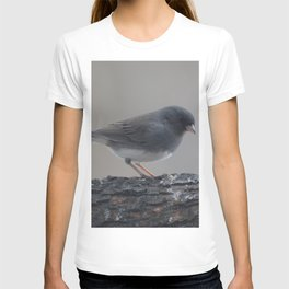 A Slate Eyed Junco T-shirt
