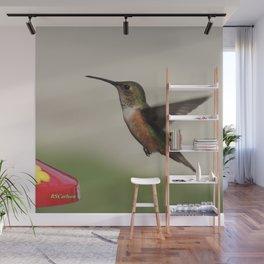 Ms. Hummingbird Checks the Feeder Wall Mural