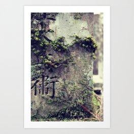 Mount Koya #8 Art Print
