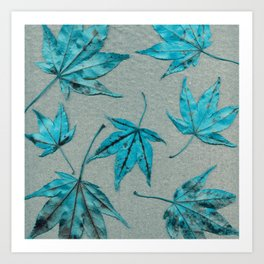 Japanese maple leaves - turquoise on silver gray paper Art Print