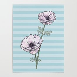 Anemone Stripes Poster