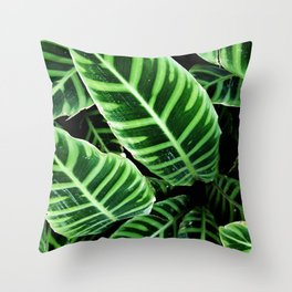 7     Plants Photography   200630   Throw Pillow