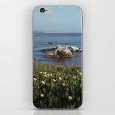 Shell Beach California iPhone & iPod Skin