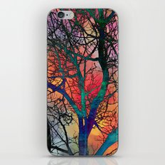Dreamy Sunset iPhone & iPod Skin