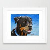 rottweiler Framed Art Prints featuring Rottweiler by paintintheneck