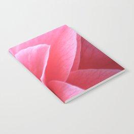Pink Camellia Notebook
