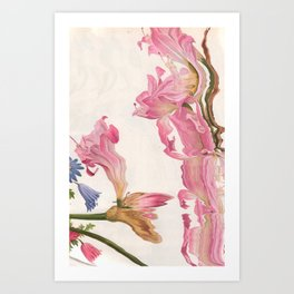 Pinku Art Print