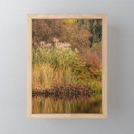 Golden Autumn Grasses at the Pond's Edge Framed Mini Art Print