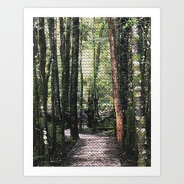 Franklin-Gordon Wild Rivers National Park  Art Print