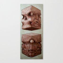 Meat Cubes Canvas Print