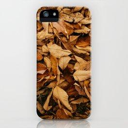 Autumn Golden Leafs (Color) iPhone Case