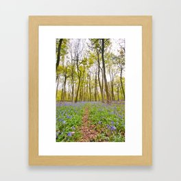 bluebell blanket Framed Art Print