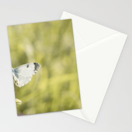 Butterfly on a spring flower Stationery Cards