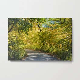 Central Park in Autumn (NYC) Metal Print
