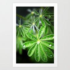 Leaf Rain Art Print