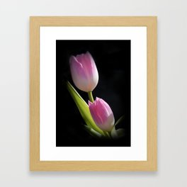 pink tulips on black Framed Art Print