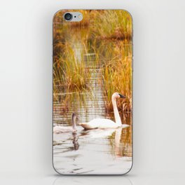A Pen and her Cygnets iPhone Skin