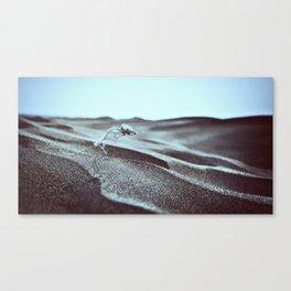 Distance Is Darkness Canvas Print