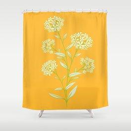 Terracina daisy Shower Curtain