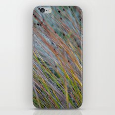 Grasses iPhone & iPod Skin