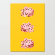 tridrangea Canvas Print
