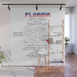 Florida Wall Mural