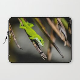 Green Carolina Anole Aloft Laptop Sleeve
