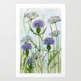 Thistle White Lace Watercolor Art Print